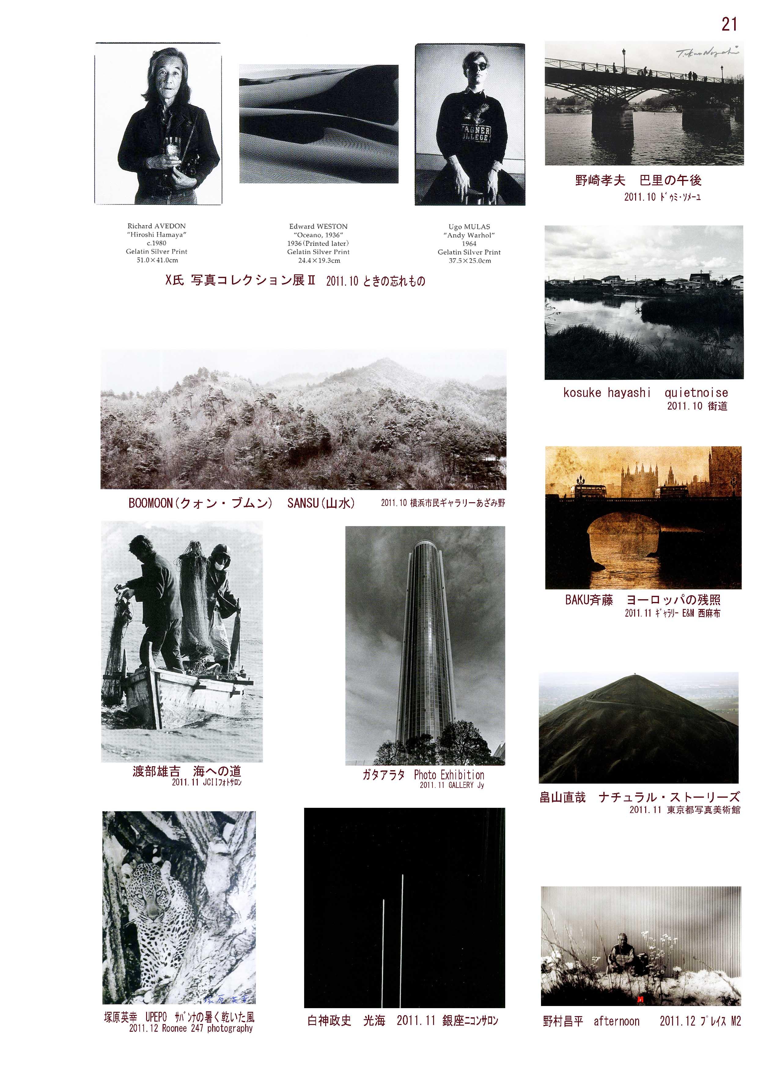Richard Wayne Broken Silence Wolf Print  29 x 19